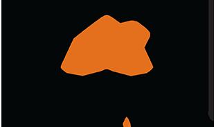 Alarm.com Logo Vertical